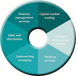 Specialised Treasury Services